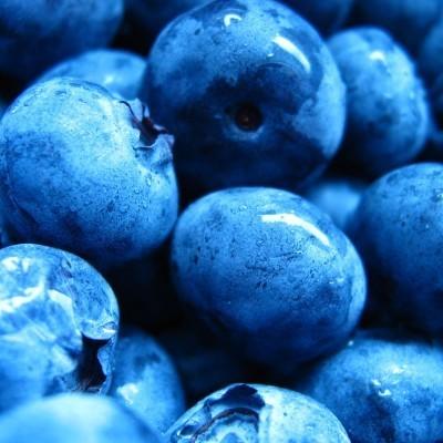 Yogurt & Blueberry Facial