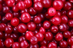 Dr Oz The Power of Cranberry