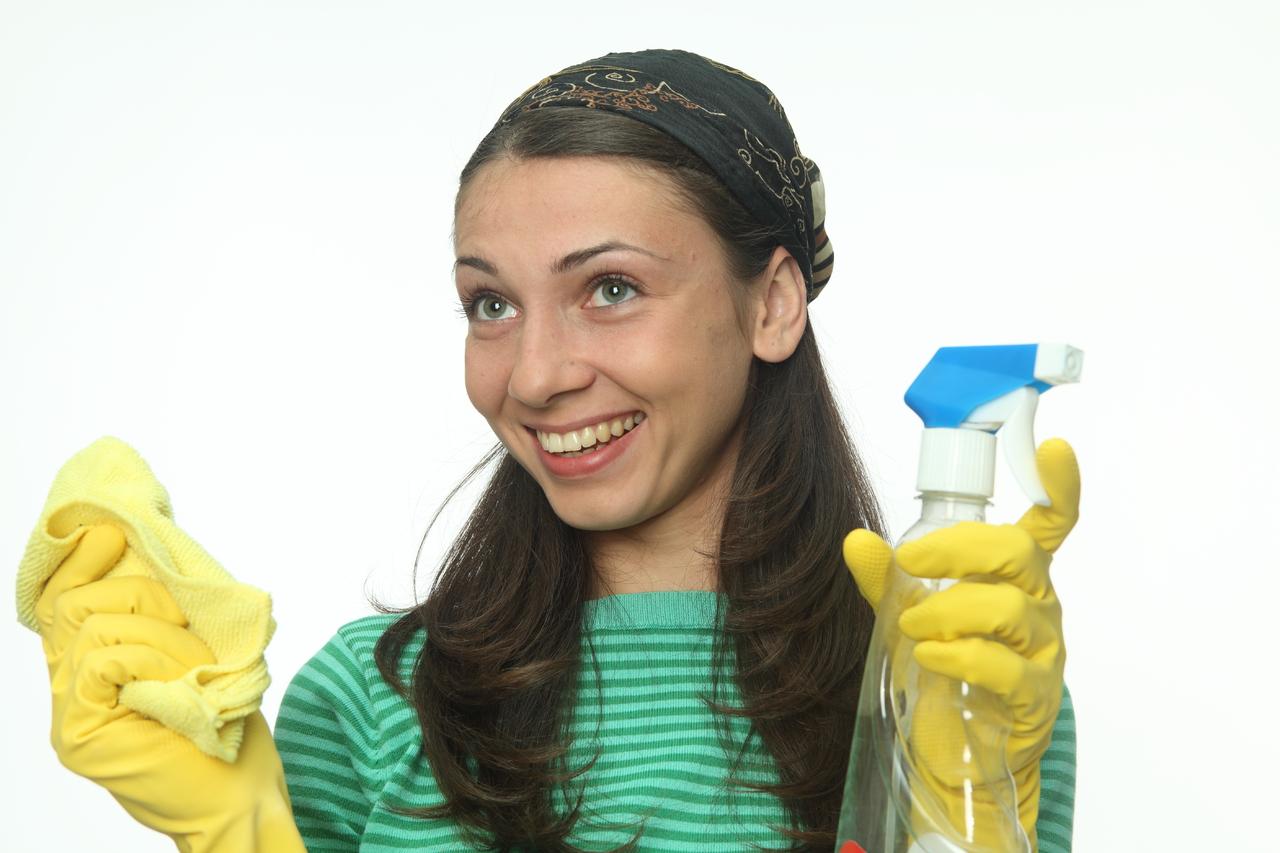 Хозяйка и уборщица 16 фотография