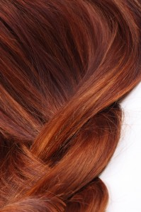Dr Oz Healthy Hair Foods