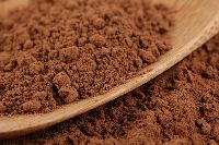Dr Oz Cocoa Recipes