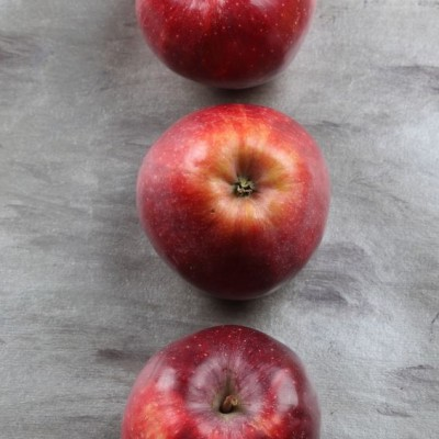 Dr. Oz talked about a new GMO apple that doesn't brown when you cut into it. Is it safe?