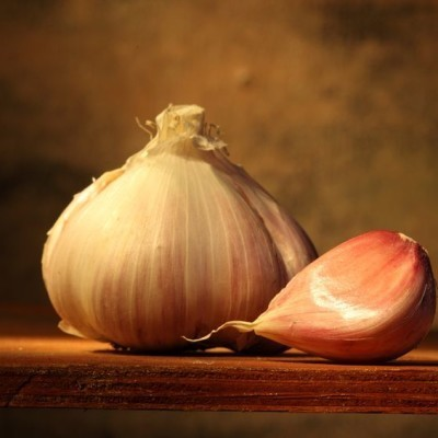 Dr Oz Garlic Supplements