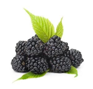 Black Raspberry Supplements