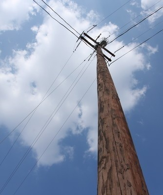 Fear of Heights: Dr Oz Climbs a Telephone Pole in the Desert