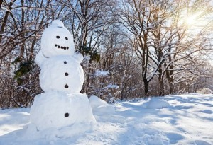 Light Bulb Snowman Ornament, Artichoke Face Mask & Bruno Mars