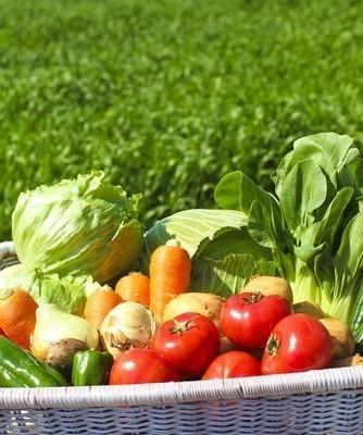 Best of Dr Oz: Vegetable Powder, RealAge Test & Sepsis Symptoms
