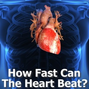 Dr Oz: How Fast Can The Human Heart Beat? & Belly Buster Workout Moves