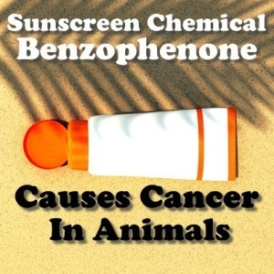 Dr Oz: Sunscreen Causes Cancer? Benzophenone Sunscreen Risk