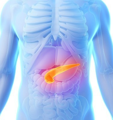 Dr Oz: What Does the Pancreas Do? How Healthy is Your Pancreas?