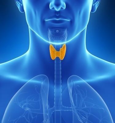 Dr Oz: Sluggish Thyroid Mirror Test & What is Hypothyroidism?