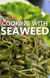 Dr Oz: Seaweed Health Benefits & Seaweed Spinach Artichoke Dip Recipe