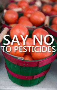 Dr Oz: GMO Crop Pesticide Resistance + Pesticide Exposure Health Risks