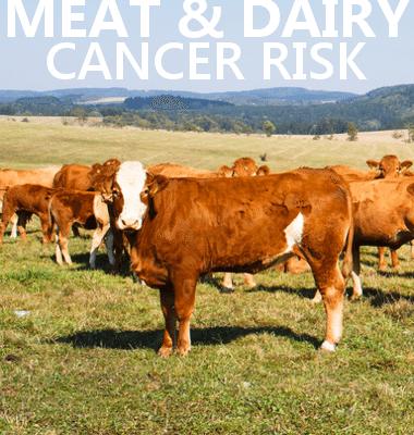 Dr Oz: Ovarian Cancer Symptoms & Pancreatic Cancer Risk Factors