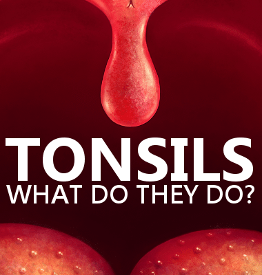 Dr Oz: Bad Breath and Ear Pain & Signs of Tonsillitis