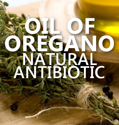 Dr Oz: Apple Cider Vinegar Dandruff Remedy & Oil of Oregano Review