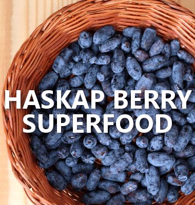Dr Oz: Haskap Berry, Lucuma Powder, Eucalyptus Oil & Holistic Health