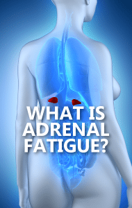Dr Oz: Adrenal Fatigue Meal Timeline + Where Are the Adrenal Glands?