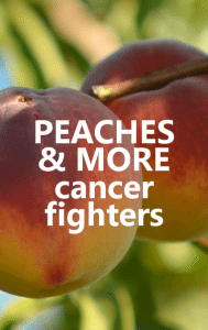 Dr Oz: Peaches Reduce Breast Cancer Risk & Oolong Tea Cancer Fighter