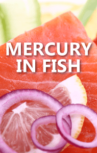 Dr oz at risk for high mercury levels symptoms low for Why do fish have mercury