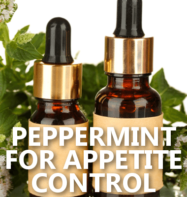 Dr. Oz: Shut Down Appetite with Peppermint & Eat Eggs for Breakfast