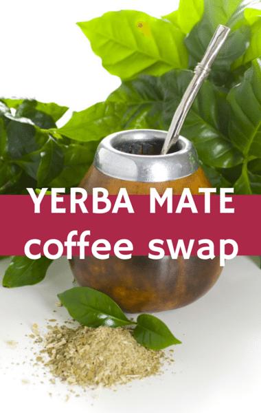 Dr. Oz: Hot Cocoa Recipe, Yerba Mate & Guayusa Coffee Alternative