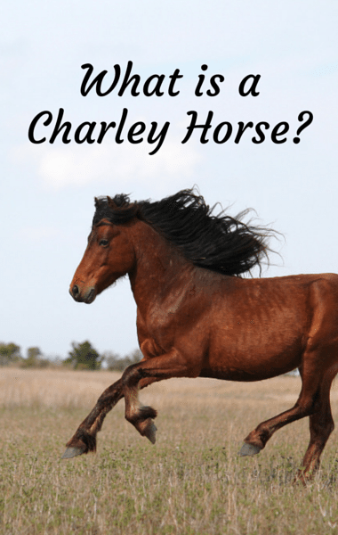 Dr. Oz: Charley Horse or Something More? Serious Causes of Spasms