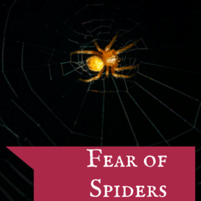 Dr. Oz: How to Face Your Chronic Fears & Overcome Fear of Spiders