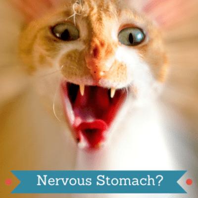 nervous-stomach-