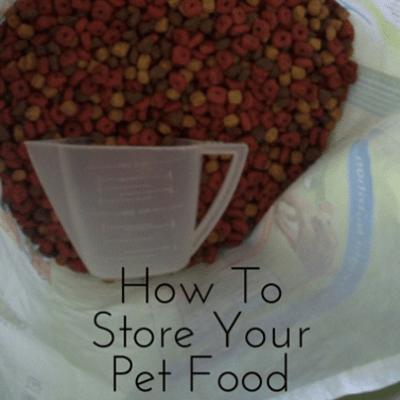 pet-food-