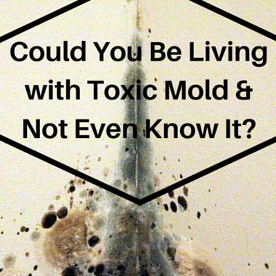 toxic-mold-