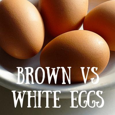 Dr Oz: Eggs & Cholesterol + Brown VS White & Easy Peel Tips