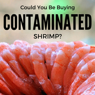Dr Oz: Tainted Imported Shrimp VS Local + Seafood Shopping Tips