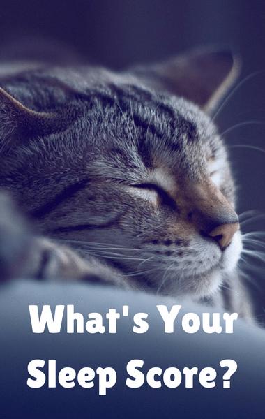 Dr Oz: Better Sleep Podcast + Sleep Score & Understand Insomnia