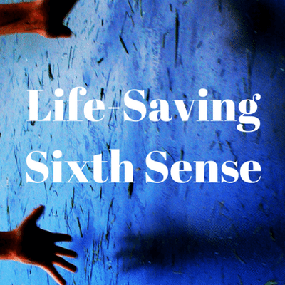 Dr Oz: Why You Should Follow Your Gut + Life-Saving Sixth Sense