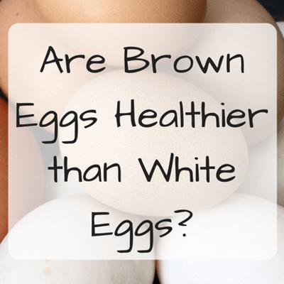 Dr Oz: Best Scrambled Eggs & Are Brown Eggs Healthier Than White?