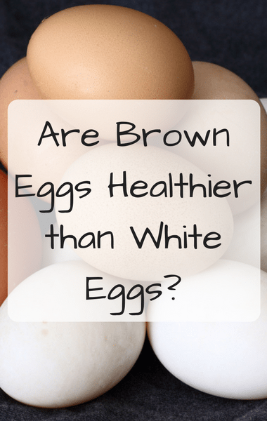 Dr Oz: Best Scrambled Eggs & Are Brown Eggs Healthier Than White?