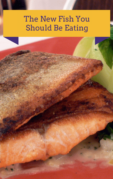 Dr Oz: Arctic Char Healthier Than Salmon & Shrimp Nori Burger