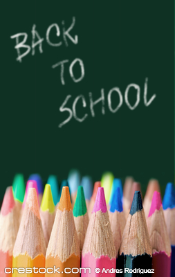 back to school - colour pencils in vibrant ton...