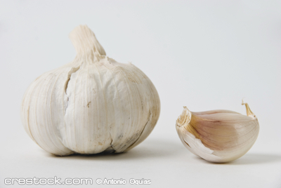 Close-up of garlic bulb on white background, s...